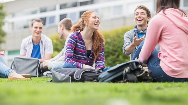 Image of students sitting on grass talking in groups
